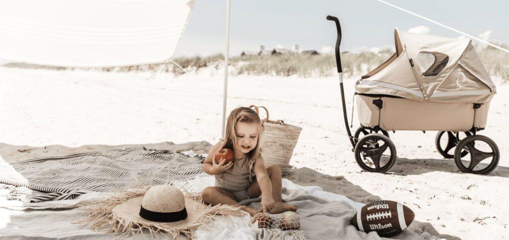 beach wagon company